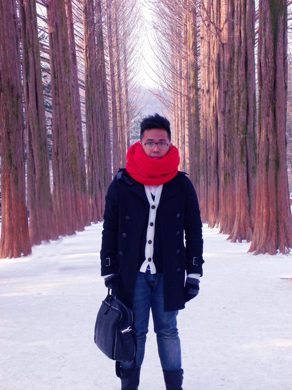 """Nami Island Winter"" -Picture with the metasequioa tree lane"