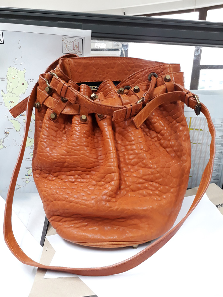Rise above the mess - Alexander Wang Diego Bucket Bag Tangerine Pebbled Leather