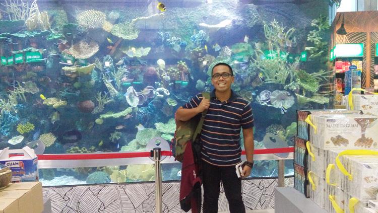 One giant saltwater aquarium