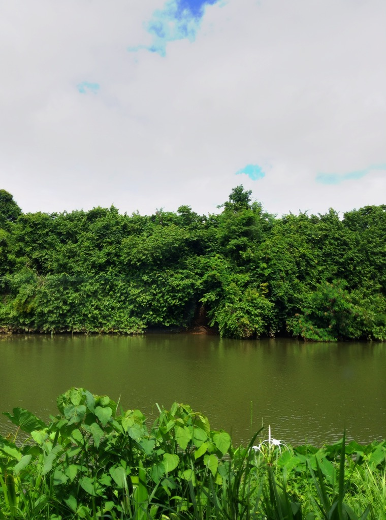 River Kwai from our training room
