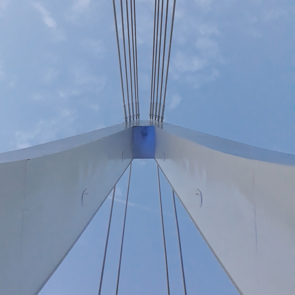 024 View from below